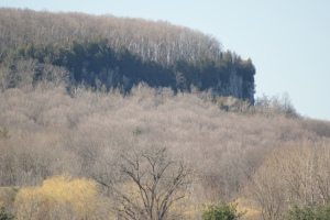 Springtime at Rattlesnake Point